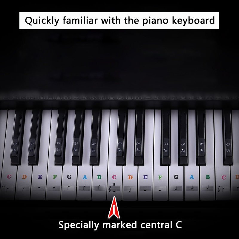 US-37-49-54-61-88-Transparent-Piano-Keyboard-Stickers-Removable-Piano-Sticker thumbnail 15